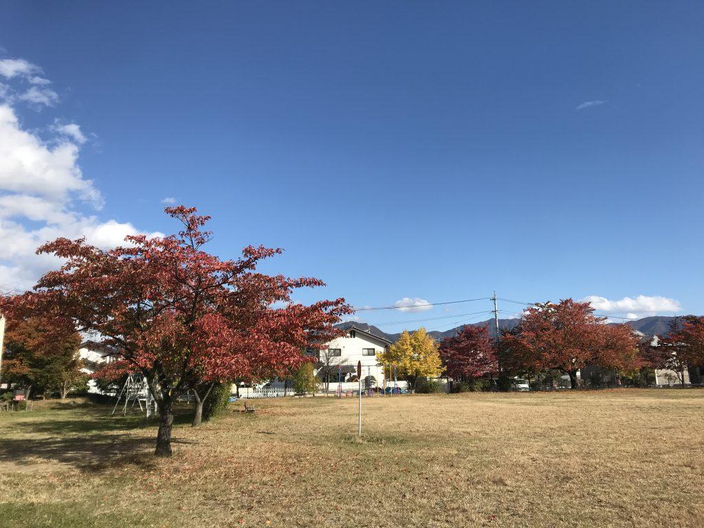 平日昼間に公園で撮った風景